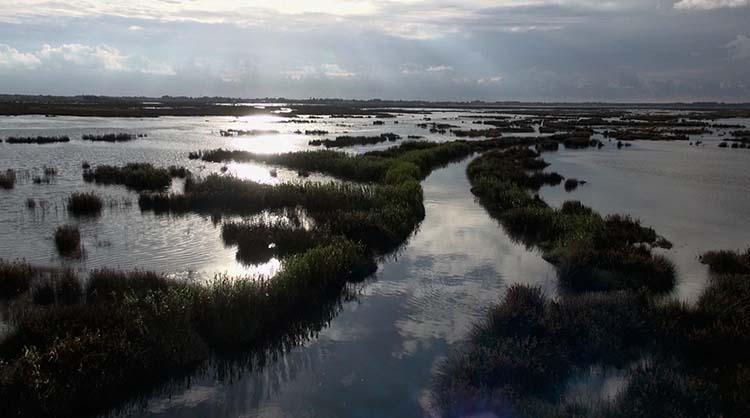 lagune et lusine 9