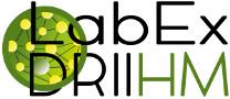 logo driihm trans small